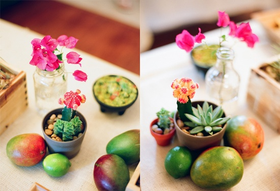 Cacti and succulents surrounded by mangoes and limes for a green theme.