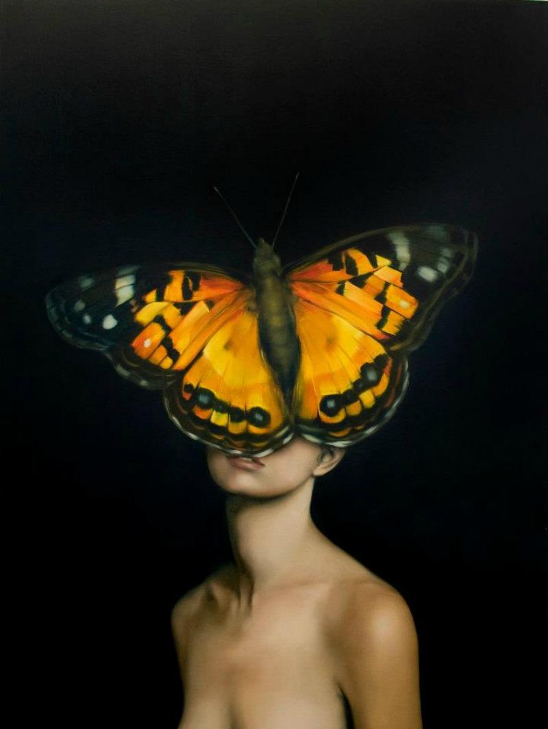butterfly orange face 800