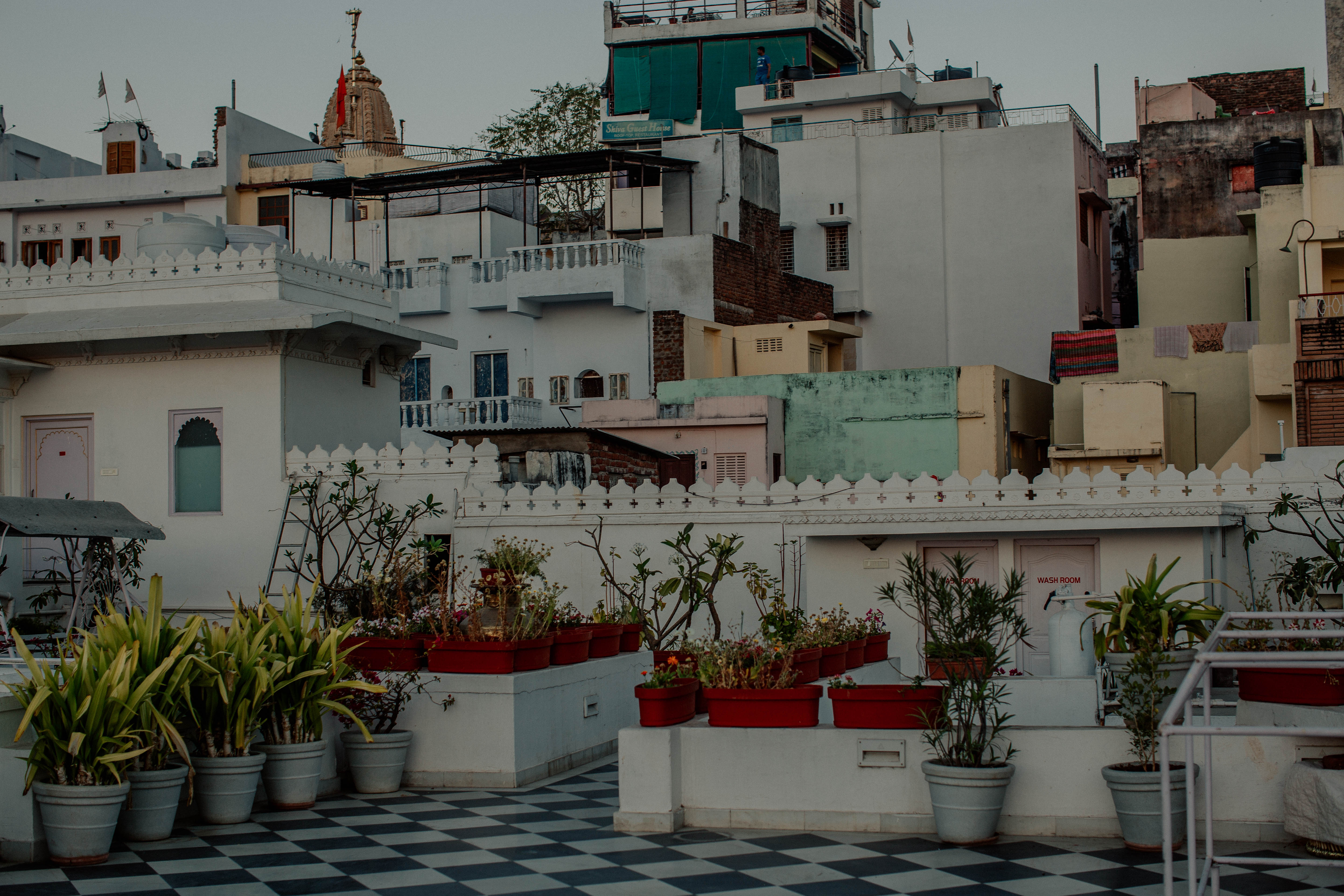 Floral Maximalism in Udaipur