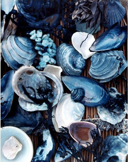 Nomad Luxuries image of navy blue colored shells for color inspiration