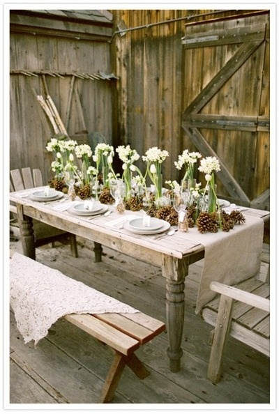 Nomad Luxuries; paper whites crisply arranged as a centerpiece in a rustic setting.