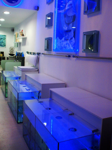 Nomad Luxuries image of the fish spa facilities.